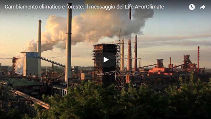 Nuovo video del progetto AForClimate
